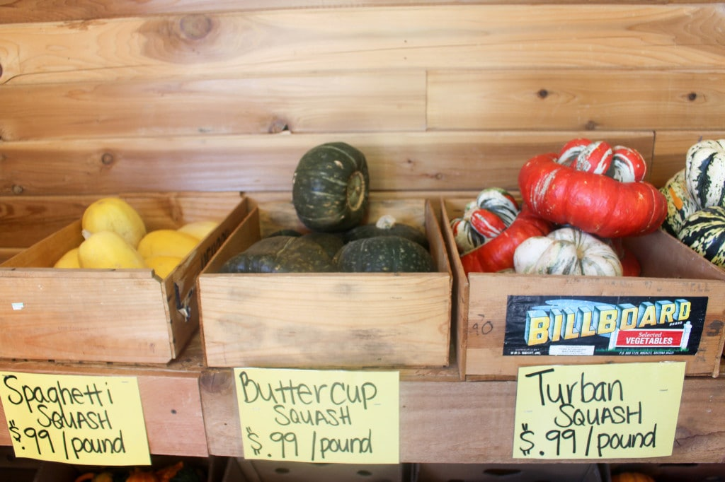 Green Bluff Adventures | Catching Seeds