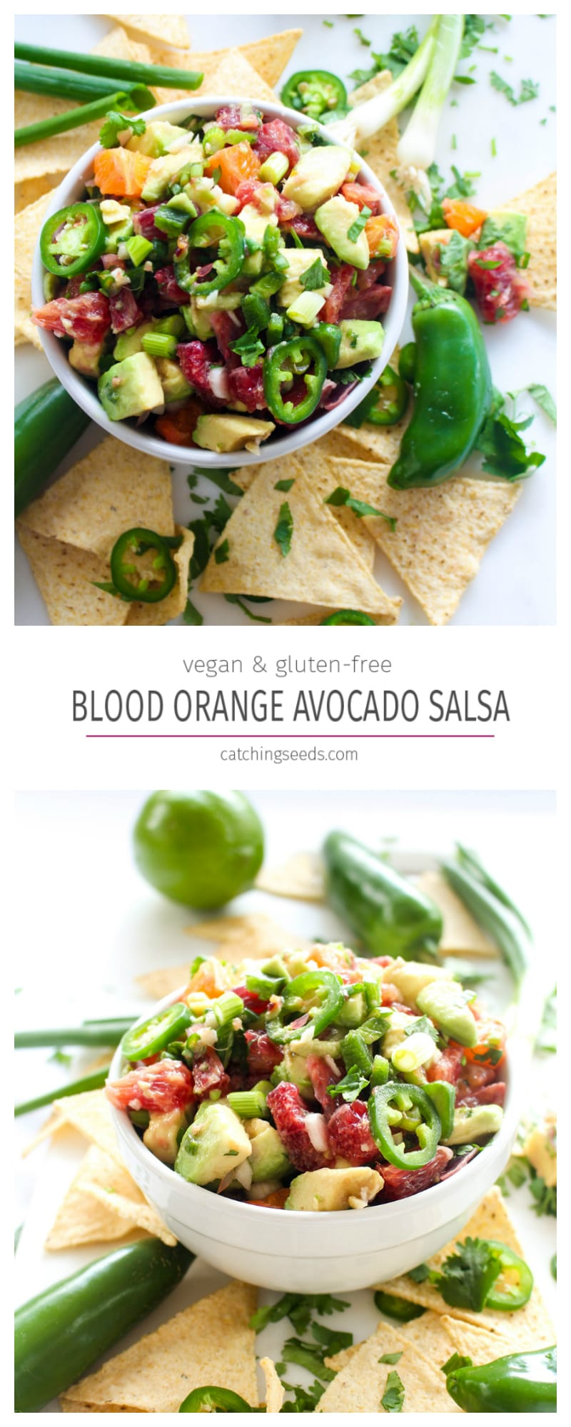 An exciting spin on salsa! Rich flavors of blood orange and creamy avocado make for one killer salsa recipe.