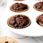 Vegan gluten Free Chocolate Muffins with chocolate chips.