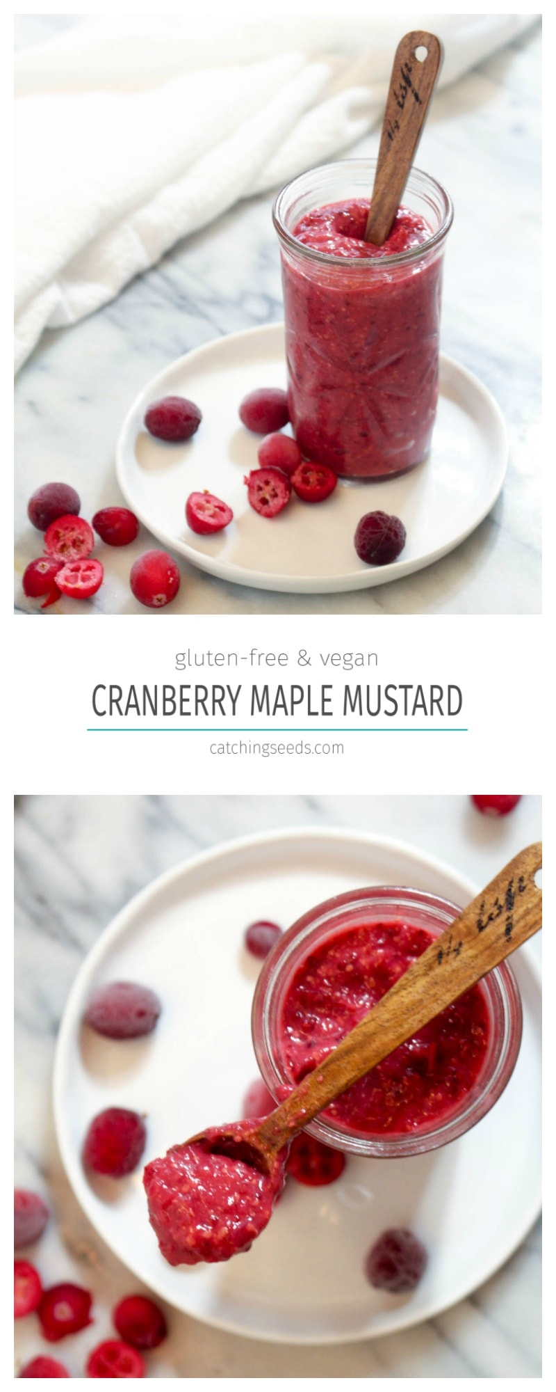 This easy 4 ingredient recipe for Cranberry Maple Mustard was made in condiment heaven. | Catching Seeds