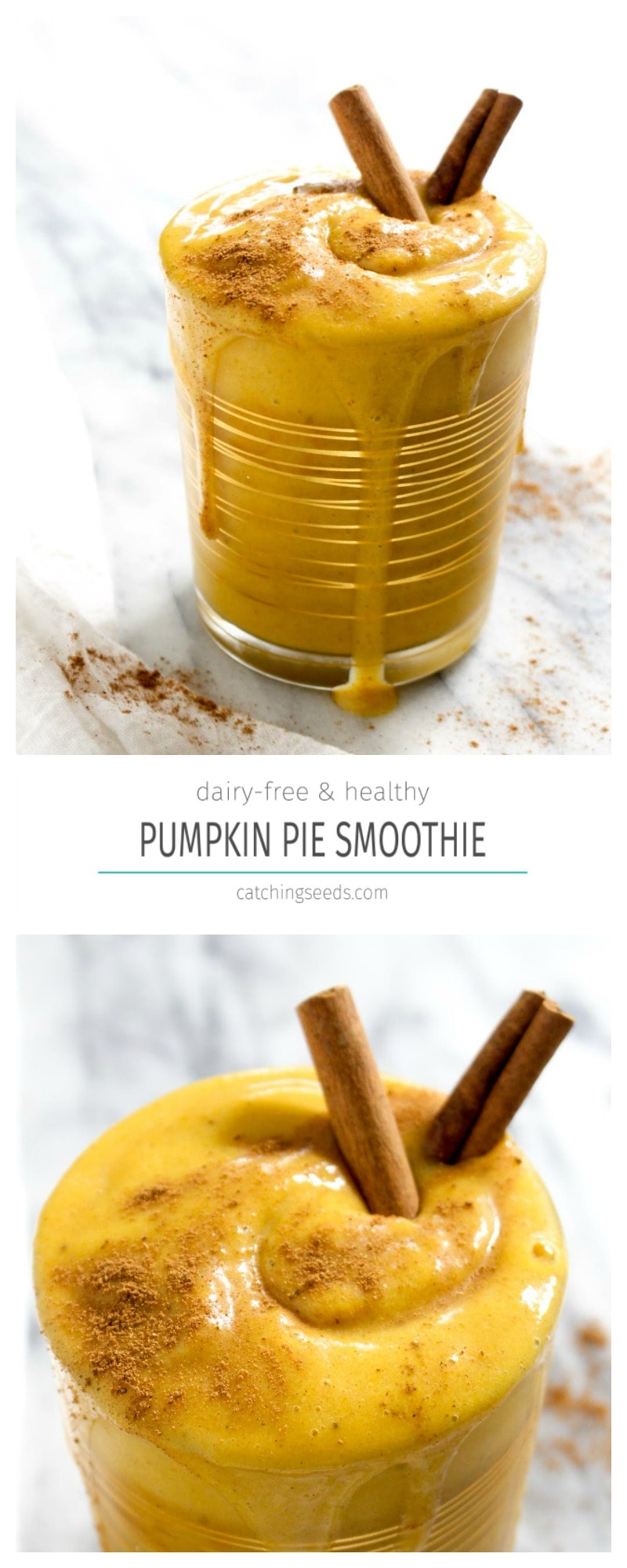 This Pumpkin Pie Smoothie is a healthy way to get your Pumpkin Pie fix! It is flavored with canned pumpkin and pumpkin pie spice. A Jamba Juice copycat recipe | CatchingSeeds.com