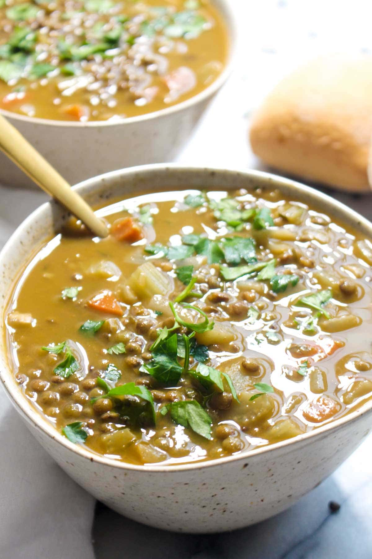 This healthy Detox Lentil Soup is jam packed with both nutrients and flavor. A super easy recipe with just two steps and simple ingredients. | CatchingSeeds.com
