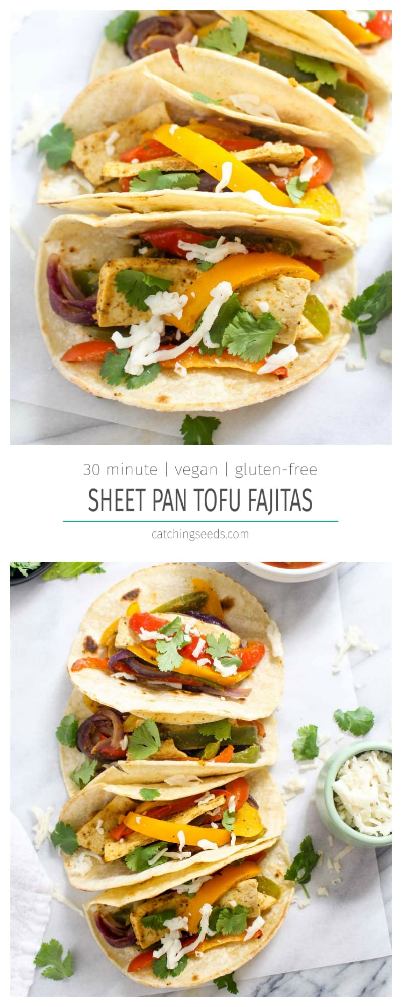 These Sheet Pan Tofu Fajitas are a quick one pan meal. This dinner recipe is packed with flavorful spices and perfectly cooked veggies, plus the tofu adds 13 grams of plant based protein protein per serving! | CatchingSeeds.com