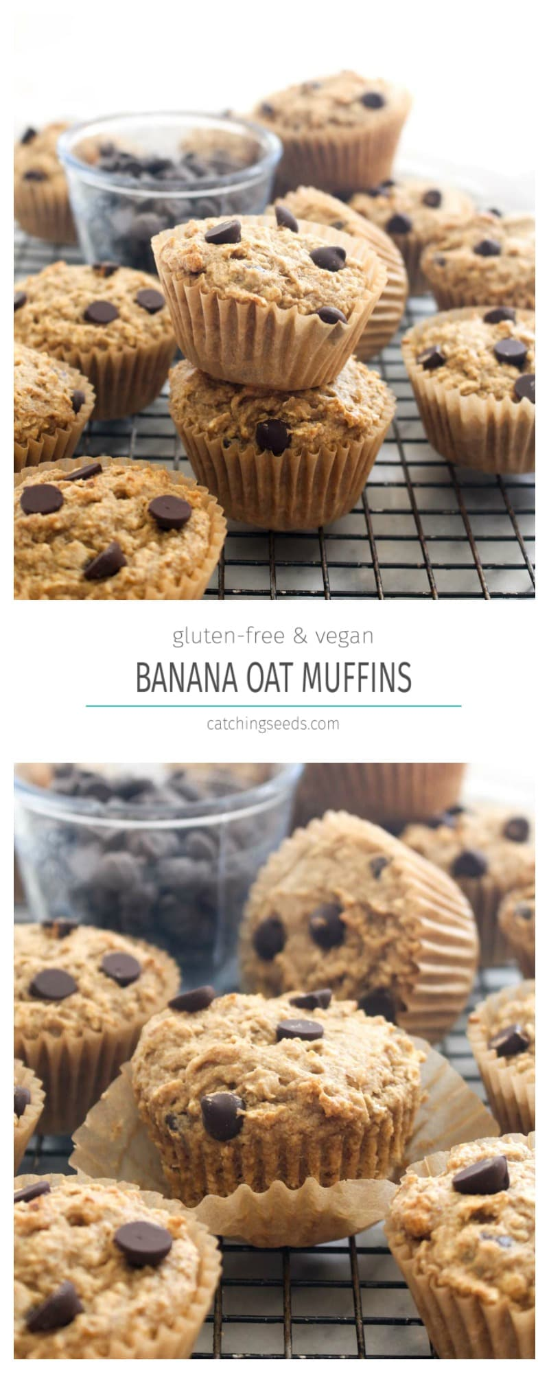 These Gluten Free Banana Oat Muffins are also dairy free and egg free. Natural sweeteners create a delicious and moist muffin. You will never guess this recipe is healthy! | CatchingSeeds.com