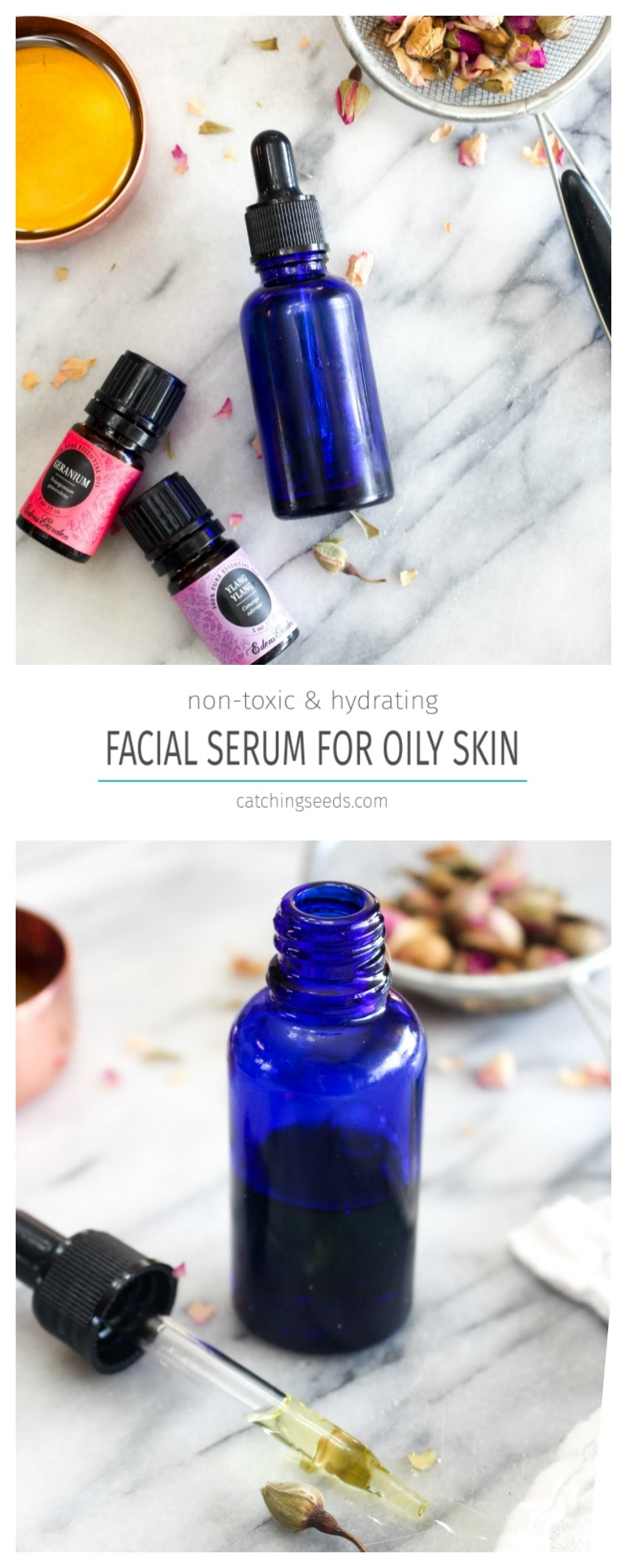 Hydrating Face Serum for Oily Skin is an antioxidant charged facial moisturizer! This easy recipe uses simple non toxic beauty ingredients for glowing skin. | CatchingSeeds.com
