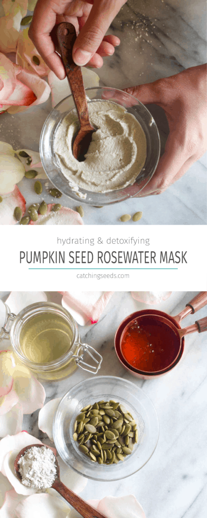 ThisPumpkin Seed Rosewater Face Mask is a hydrating and detoxifying facial all-in-one! It will gently clean pores and banish blackheads while hydrating your skin. Great for all skin types - including sensitive. | CatchingSeeds.com