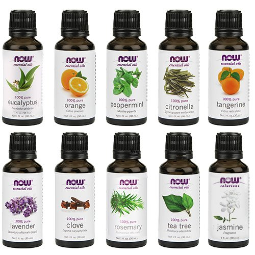 Now Essential Oils Kit | The Best Christmas Gifts (that you can buy without leaving the house!) | CatchingSeeds.com