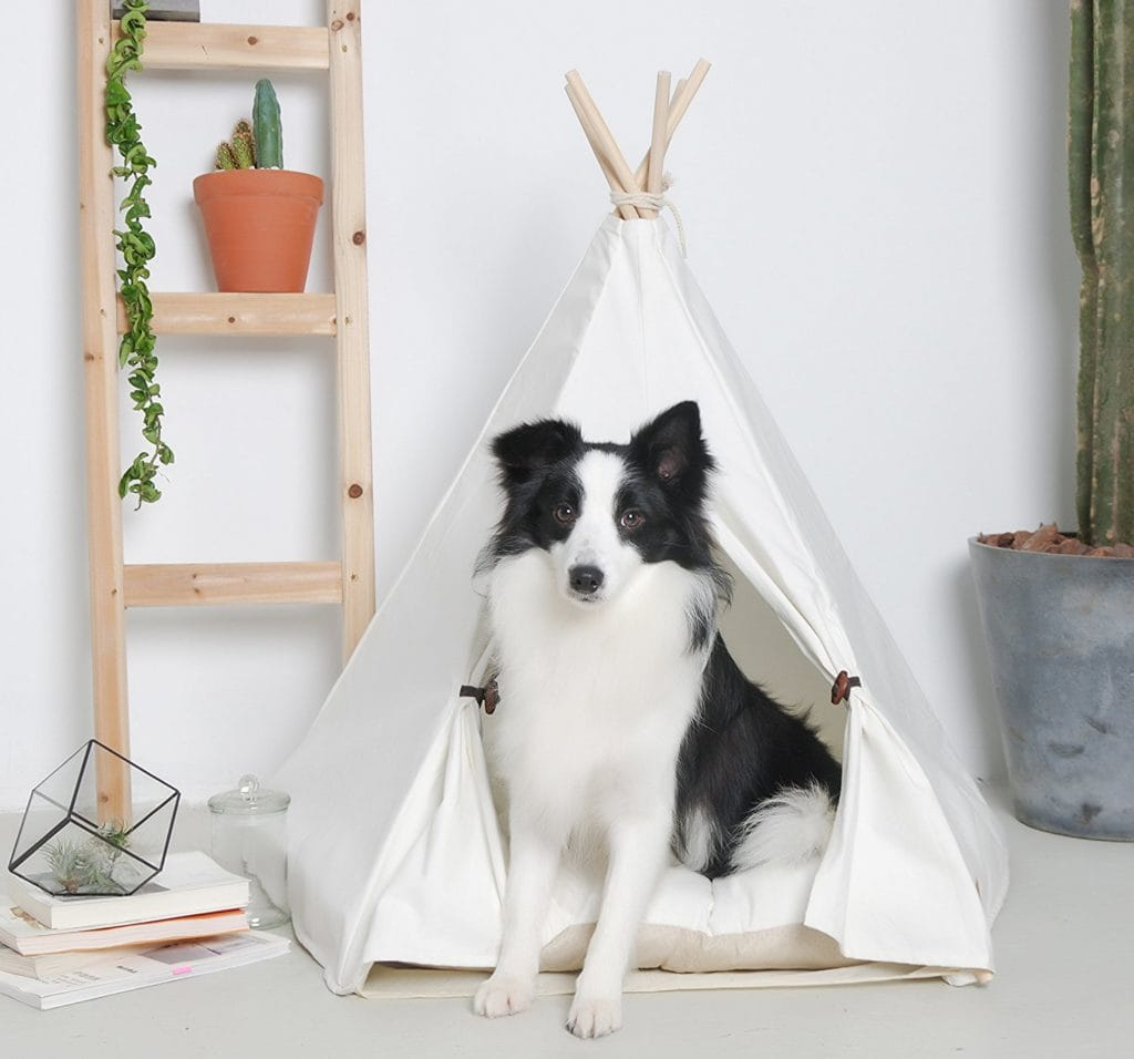 Pet Teepee | The Best Christmas Gifts (that you can buy without leaving the house!) | CatchingSeeds.com