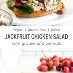 A jackfruit chicken salad sandwich with grapes and walnuts on a white plate.