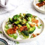 Tempeh broccoli stir fry on rice with scallions.